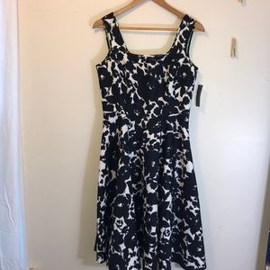 NWT Covington black/white floral dress Sz 6